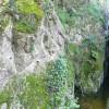 Gorges de Salenys